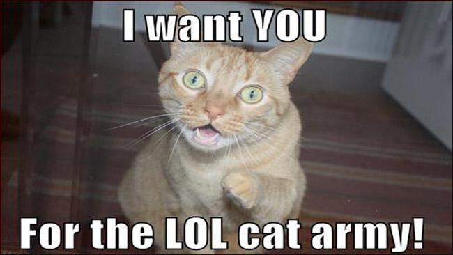 LOLcat Army